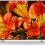 Spotlight on the Sony BRAVIA Professional Displays BZ35F Series